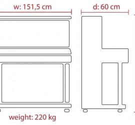 Feurich 125 Design